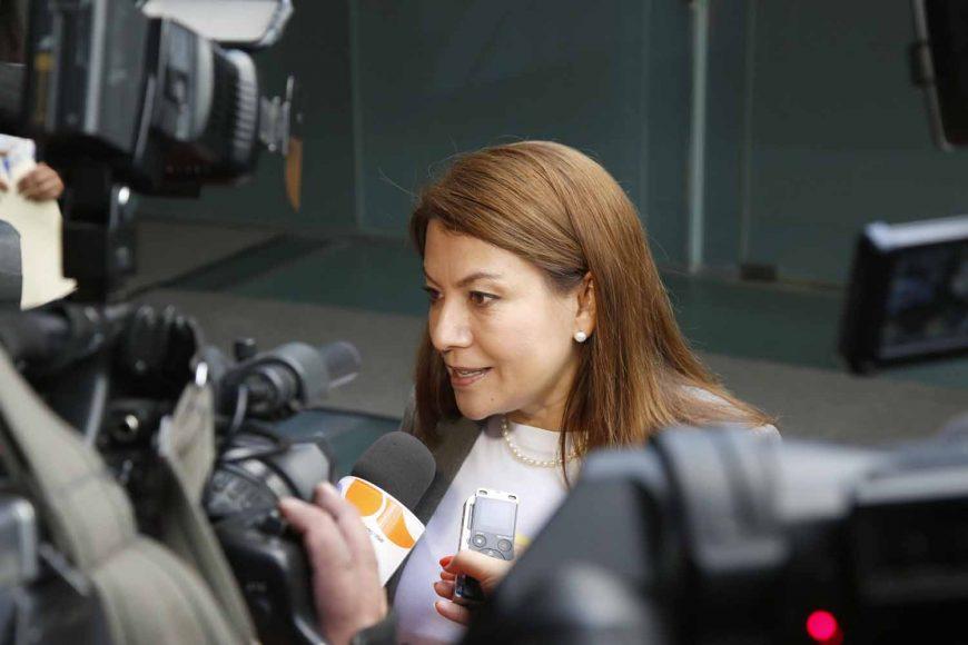 Senadora electa, María Guadalupe Saldaña