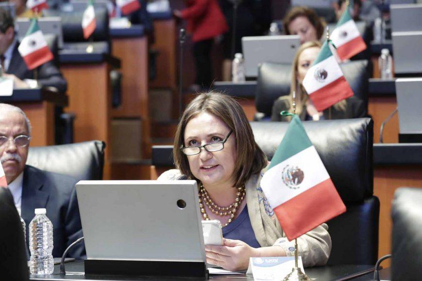 Senadora Xóchitl Gálvez Ruiz, Manuel Velasco