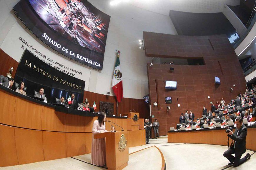 Senadora Martha Cecilia Márquez Alvarado, agenda legislativa del PAN