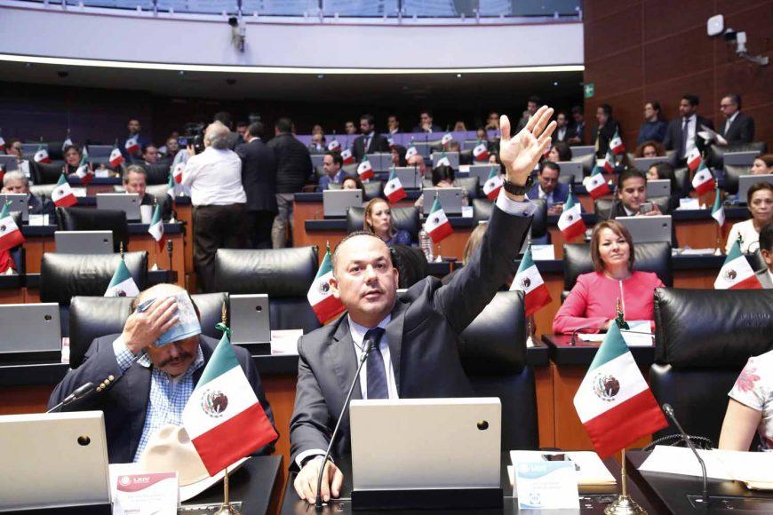 Senador José Erandi Bermúdez Méndez