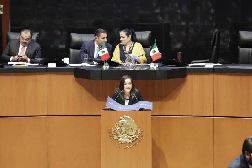 Senadora Martha Cecilia Márquez Alvarado, Ley General de Protección a las Mujeres Embarazadas