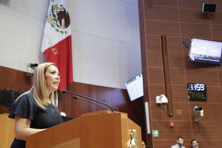 Alejandra Noemí Reynoso Sánchez, Ley del Consejo Mexicano de Política Exterior