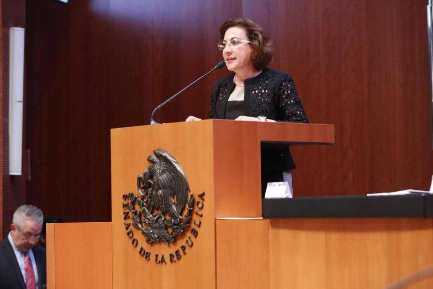 María Guadalupe Murguía Gutiérrez, articulo 19 de la Constitución