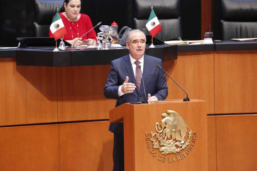 Senador Julen Rementería Del Puerto