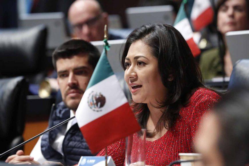 Senadora Nadia Navarro Acevedo, al participar en la discusión de una moción a la Mesa Directiva
