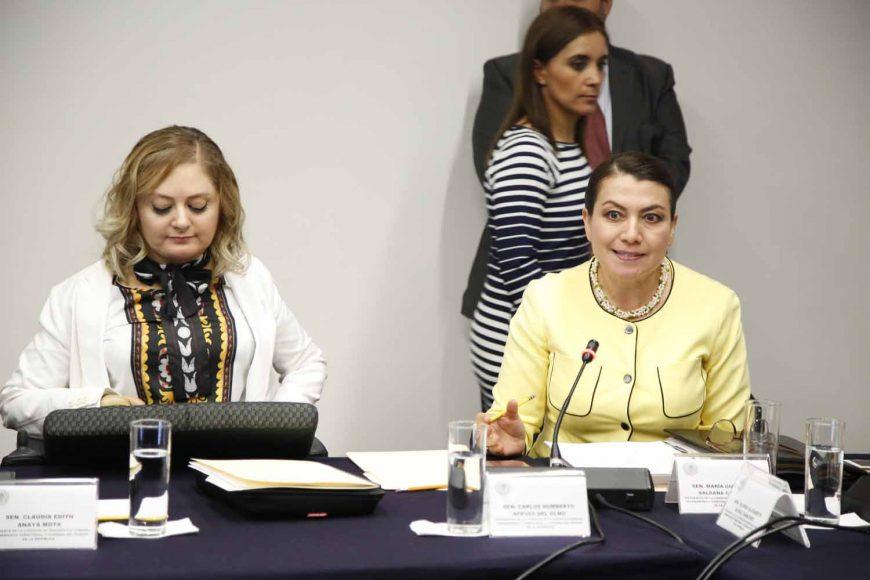 Comisión de Desarrollo Urbano, Ordenamiento Territorial y Vivienda, Víctor Oswaldo Fuentes Solís, Gloria Elizabeth Núñez Sánchez, María Guadalupe Saldaña Cisneros