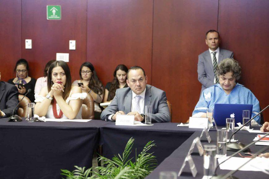 Los Senadores del PAN Juan Antonio Martín del Campo y José Erandi Bermúdez Méndez, durante la reunión de Instalación de la Comisión de Agricultura, Ganadería, Pesca y Desarrollo Rural