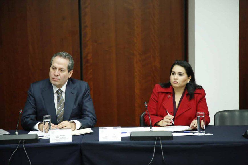 Mayuli Latifa Martínez Simón, Gloria Elizabeth Núñez Sánchez, Instalación Comisión de Relaciones Exteriores Asia-Pacífico-África