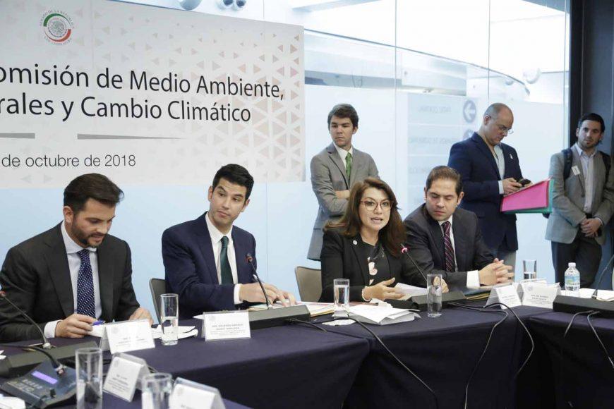 Comisión Medio Ambiente, Recursos Naturales y Cambio Climático, Noemí Reynoso Sánchez, María Guadalupe Saldaña Cisneros, Xóchitl Gálvez Ruiz