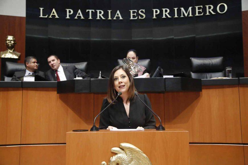 Gina Andrea Cruz Blackledge, Ley del Impuesto Especial sobre Producción y Servicios