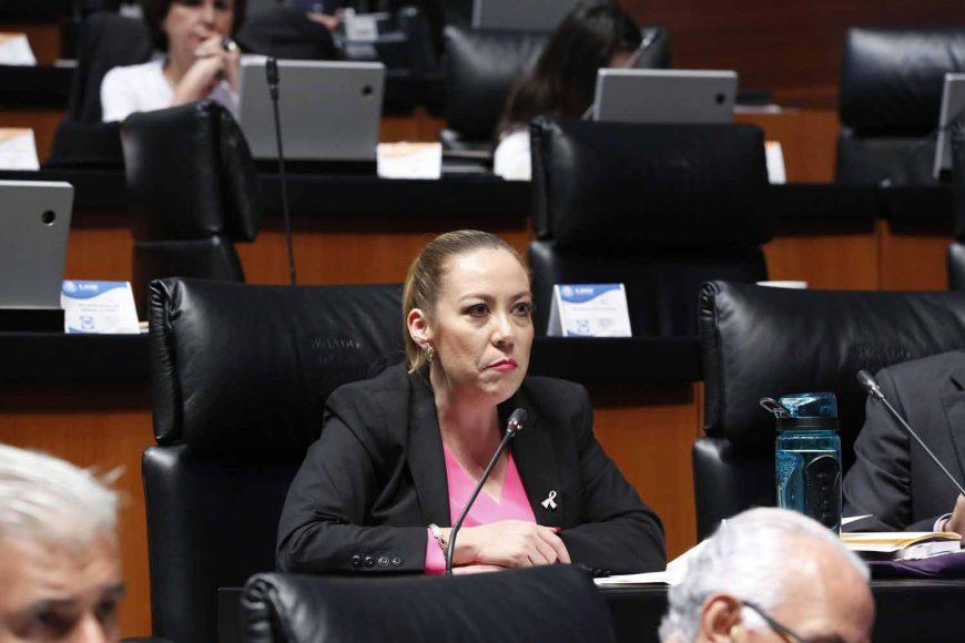 Senadora Alejandra Noemí Reynoso Sánchez al intervenir desde su escaño