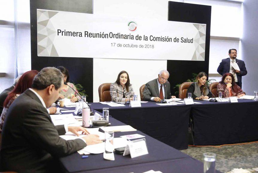 La senadora Martha Cecilia Márquez Alvarado, secretaria de la Comisión de Salud, durante la primera reunión ordinaria de dicha instancia legislativa.