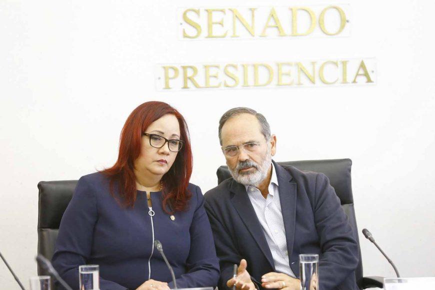 El senador Gustavo Madero Muñoz presidió la reunión de trabajo de las Comisiones unidas de Economía; de Relaciones Exteriores América del Norte; Y Relaciones Exteriores Asia - Pacífico – África, junto con la Cámara Nacional de la Industria Textil (Canaintex). También participó la senadora por Puebla, Nadia Navarro Acevedo.