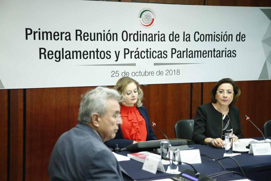 La senadora panista María Guadalupe Murguía Gutiérrez presidió la primera reunión ordinaria de la Comisión de Reglamentos y Prácticas Parlamentarias.