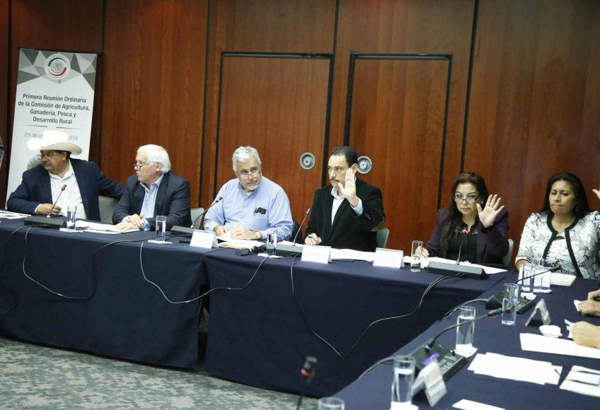 El senador panista Juan Antonio Martín del Campo durante la reunión de trabajo de la Comisión de Agricultura, Ganadería, Pesca y Desarrollo Rural.