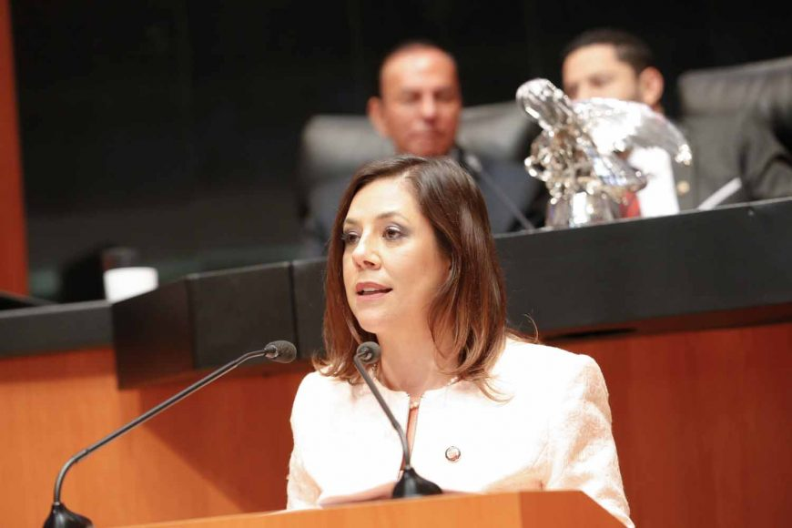 Senadora Gina Cruz propone crear un apartado tributario exclusivo para el vino de mesa