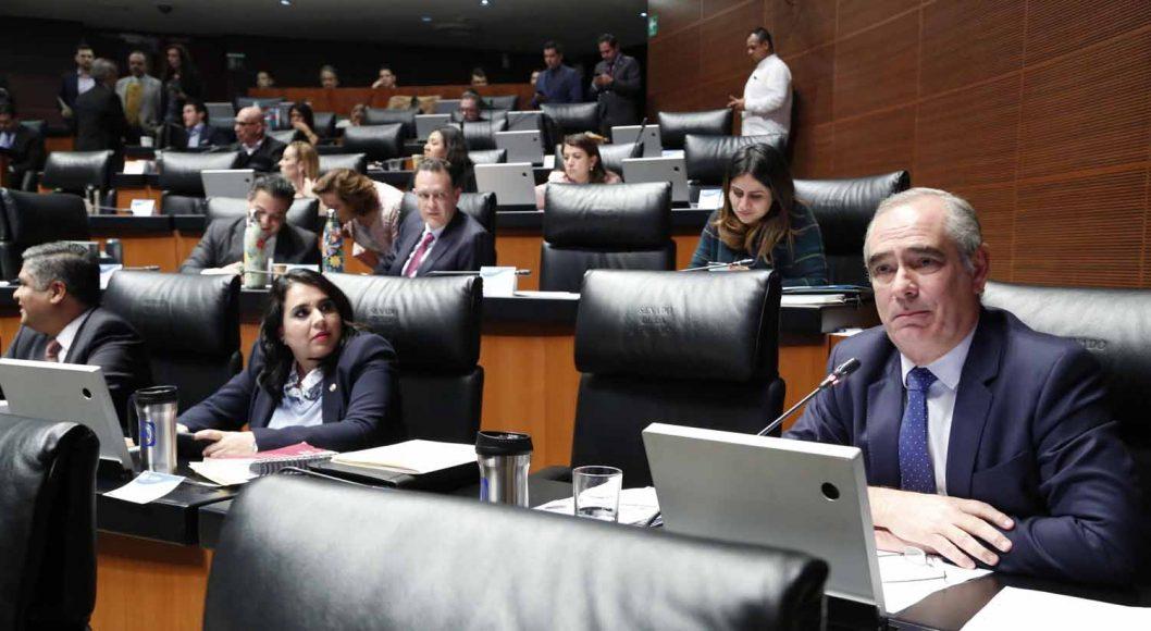 Senador Julen Rementería Del Puerto al intervenir desde su escaño