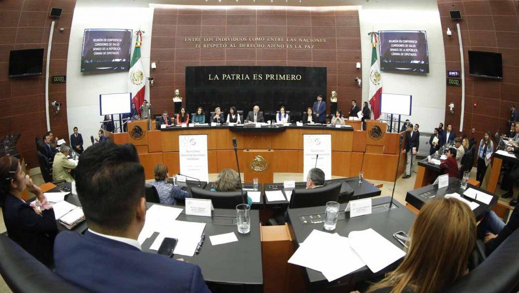 Senadora Martha Cecilia Márquez Alvarado durante la reunión de trabajo en conferencia de las comisiones de Salud de la Cámara de Senadores y Diputados