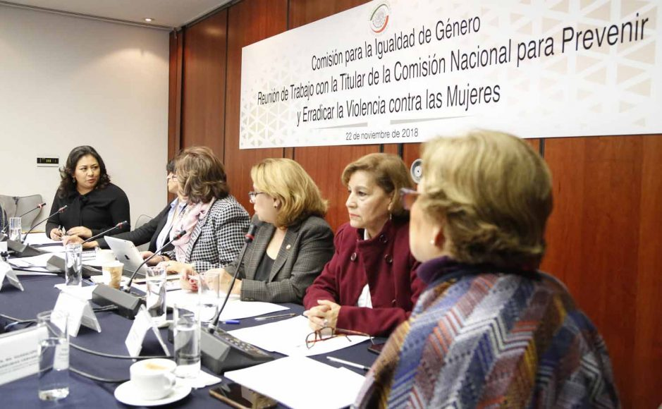 Senadora Nadia Navarro Acevedo durante la reunión de la Comisión para la Igualdad de Género con la titular de la CONAVIN