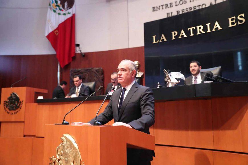 Senador Julen Rementería Del Puerto, al intervenir en Tribuna