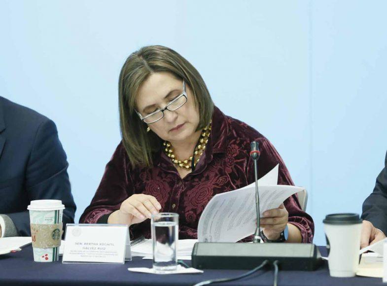 Participación de los senadores del PAN Xóchitl Gálvez Ruiz y Julen Rementería Del Puerto, durante la reunión de trabajo de la Comisión de Anticorrupción, Transparencia y Participación Ciudadana