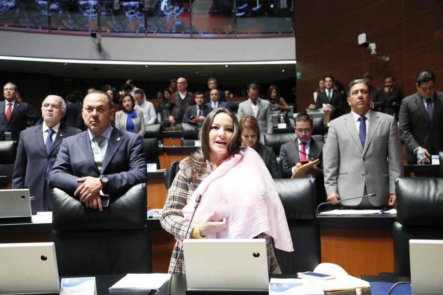 Senadora Martha Cecilia Márquez Alvarado al intervenir desde su escaño