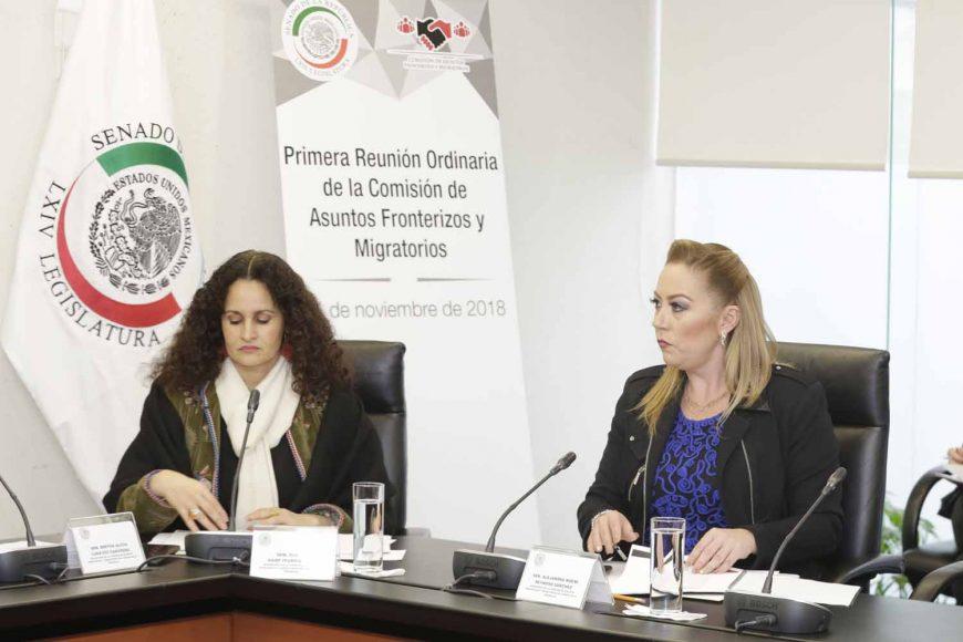 La senadora del PAN Alejandra Noemí Reynoso Sánchez, durante la reunión de trabajo de la Comisión de Asuntos Fronterizos y Migratorios.