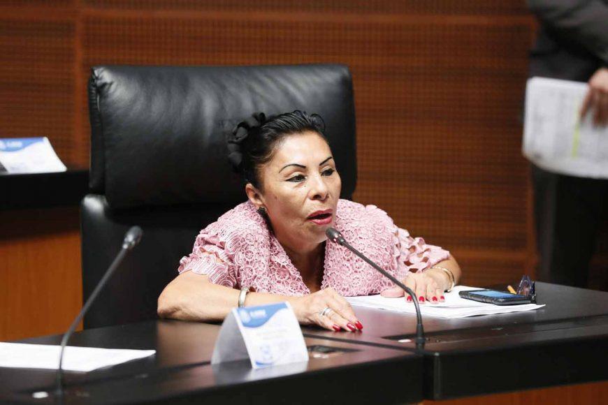 Senadora Martha María Rodríguez Domínguez al intervenir desde su escaño