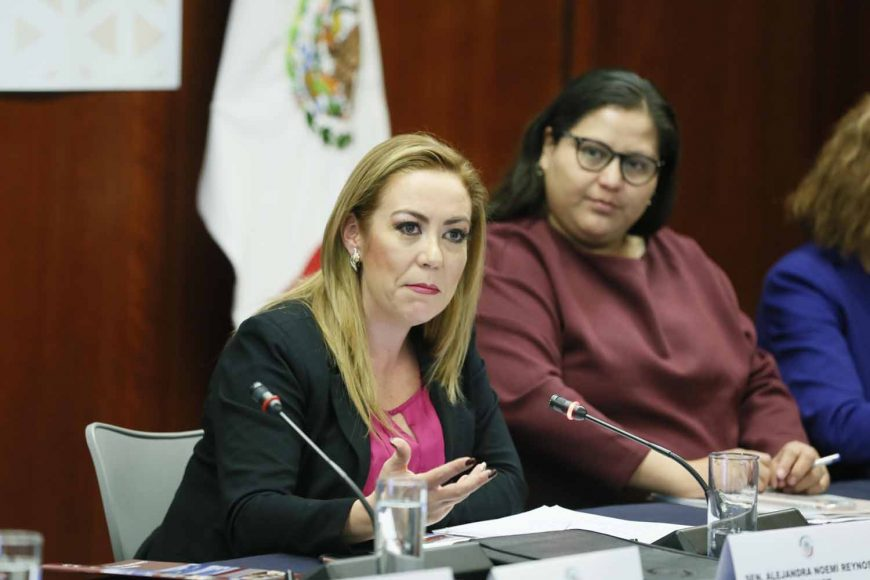La senadora Alejandra Noemí Reynoso Sánchez, al intervenir en el Foro: El estado de la caravana emigrante en Tijuana y el proceso de asilo en Estados Unidos.