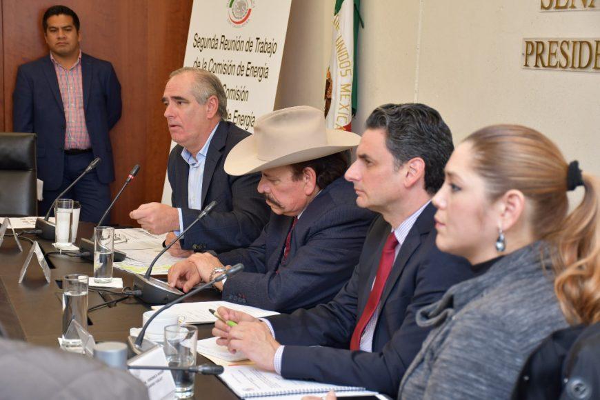 Senador Julen Rementería Del Puerto, Comisión de Energía