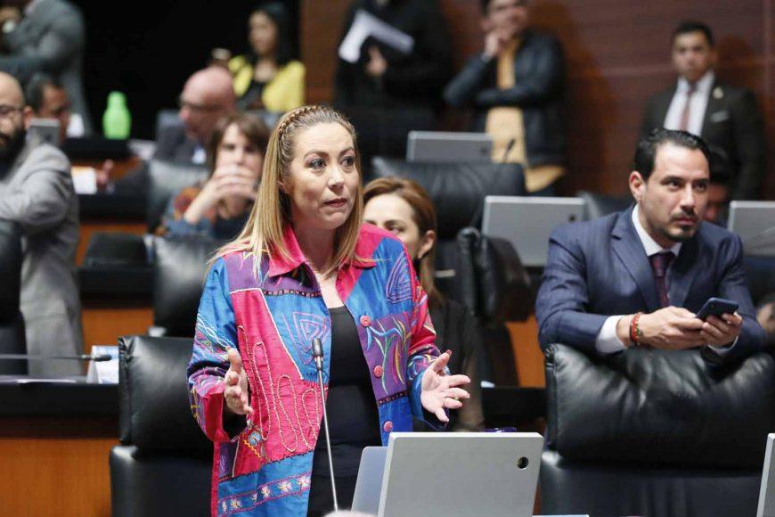 Senadora Alejandra Reynoso Sánchez, al intervenir desde su escaño