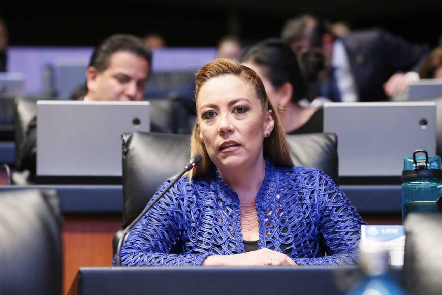 Senadora Alejandra Reynoso Sánchez, al referirse al tema de las estancias infantiles