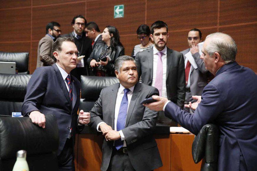 Senadores del PAN durante los trabajos de la sesión ordinaria