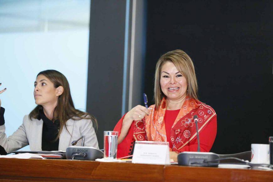 La senadora Minerva Hernández Ramos, durante la Mesa de Trabajo con el secretario de Educación, Mtro. Esteban Moctezuma Barragán, en la Tercera reunión ordinaria de la Comisión de Educación en Comisiones Unidas con Puntos Constitucionales.