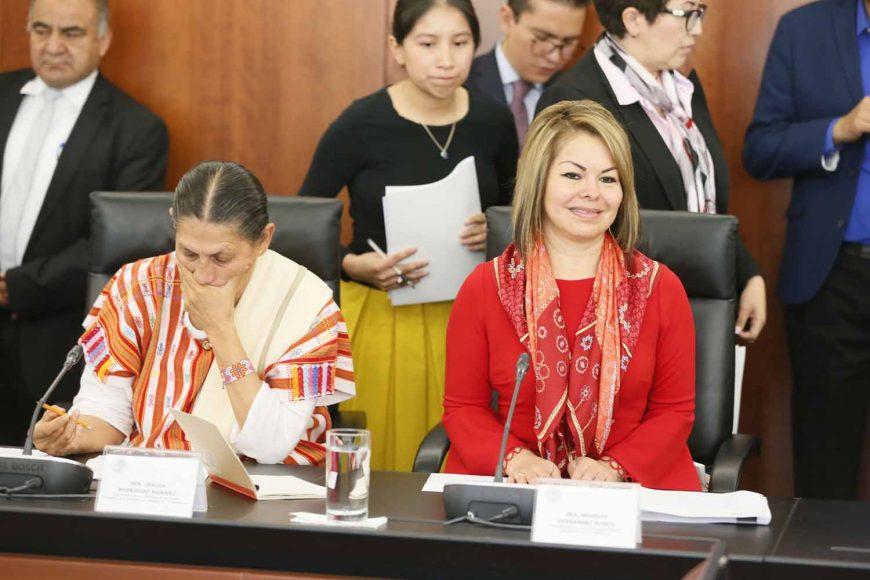Intervención de la senadora Minerva Hernández Ramos, durante la reunión de la Comisión de Economía.