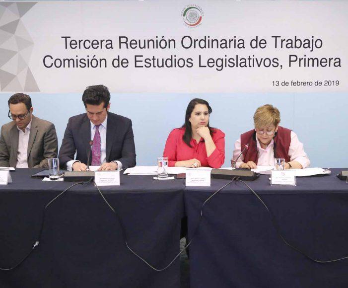 La senadora Mayuli Martínez Simón, durante la reunión ordinaria de Trabajo de la Comisión de Estudios Legislativos, Primera.
