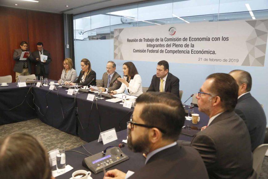 La senadora Minerva Hernández Ramos, al participar en la reunión de trabajo de la Comisión de Economía con los integrantes del Pleno de la Comisión Federal de Competencia Económica (Cofece).