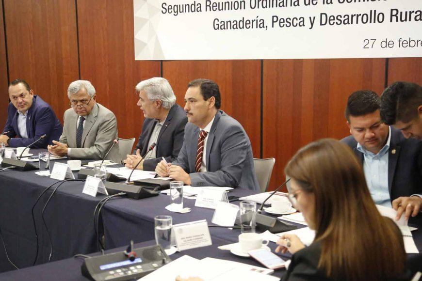 La senadora panista Guadalupe Saldaña Cisneros, así como los senadores Erandi Bermúdez Méndez y Juan Antonio Martín del Campo, durante la segunda reunión ordinaria de la Comisión de Agricultura, Ganadería, Pesca y Desarrollo Rural.