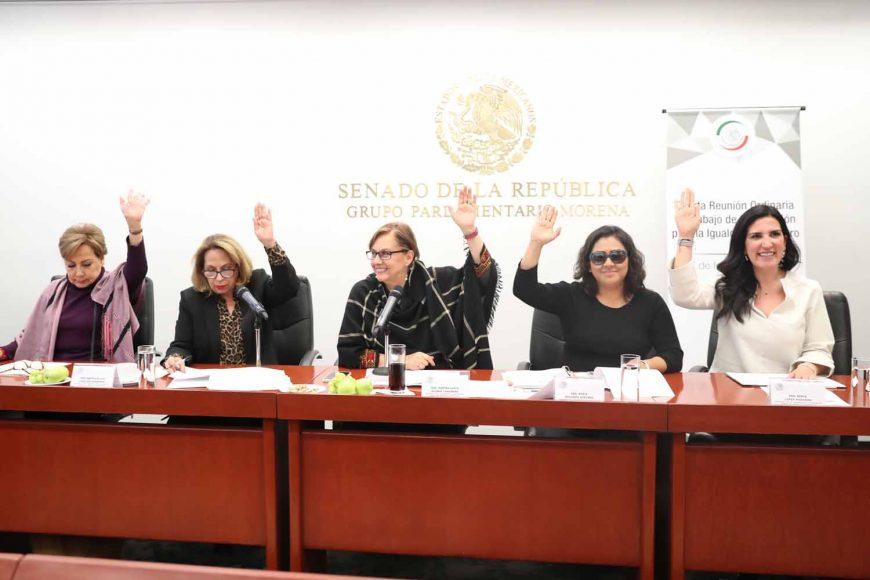 Las senadoras del PAN Nadia Navarro Acevedo y Kenia López Rabadán, durante la reunión de trabajo de la Comisión Para la Igualdad de Género