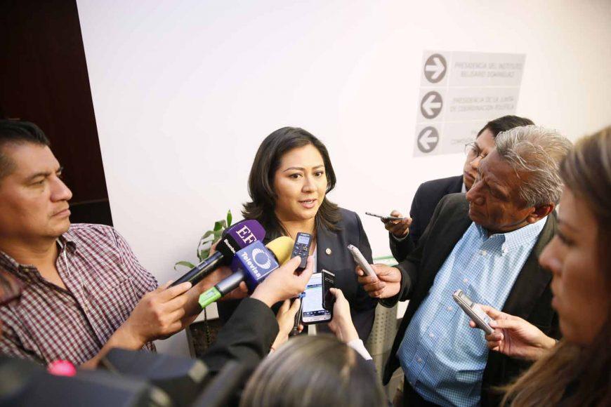 Entrevista concedida por la senadora Nadia Navarro Acevedo, al término de la reunión de la Comisión especial para los hechos ocurridos el 24 de diciembre en el estado de Puebla