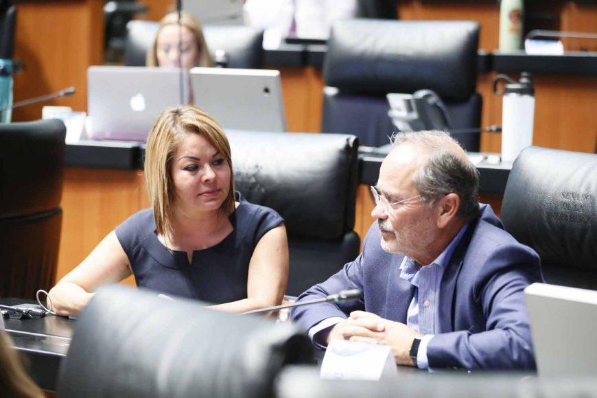 Senadores del PAN durante la sesión ordinaria