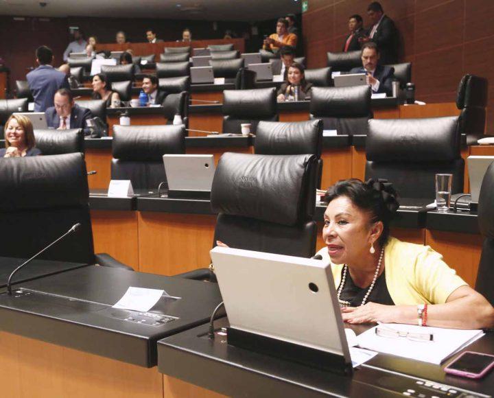 Senadora Martha Rodríguez, participa desde su escaño