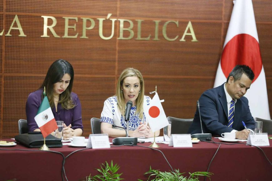 Participación de la senadora Alejandra Reynoso Sánchez en la reunión de la Comisión de Relaciones Exteriores Asia-Pacífico-África en el 130 Aniversario del establecimiento de relaciones diplomáticas entre México y Japón.