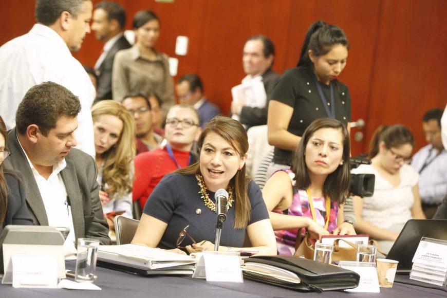 La senadora Lupita Saldaña Cisneros, durante su participación en la segunda reunión ordinaria de la Comisión de Agricultura, Ganadería, Pesca y Desarrollo Rural.