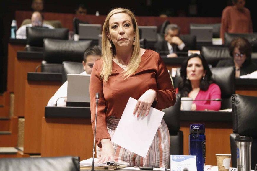 Aprueba Senado propuesta de Alejandra Reynoso para evitar la alteración en la implementación del T-MEC
