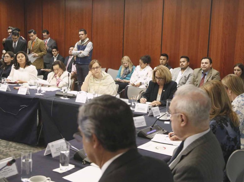 La senadora Nadia Navarro Acevedo durante la comparecencia de la C. María de los Remedios Gómez Arnaud, designada como cónsul general de México en San Francisco, California, en la reunión de las comisiones unidas de Relaciones Exteriores y de Relaciones Exteriores América del Norte.