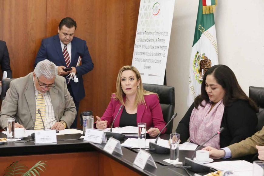 La senadora Alejandra Reynoso Sánchez, al participar durante las comparecencias de los ciudadanos designados como Cónsules Generales, ante las comisiones unidas de Relaciones Exteriores y de Relaciones Exteriores, América del Norte.