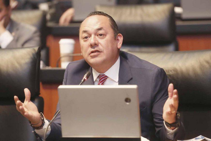 Senador suplente de la Comisión Permanente: Erandi Bermúdez Méndez