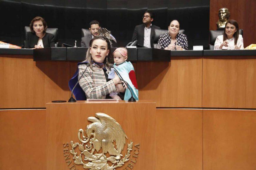 Intervención de la senadora Martha Cecilia Márquez Alvarado, al fundamentar un dictamen de las comisiones unidas de Salud y de Estudios Legislativos, por el que se adiciona una nueva fracción II Bis al artículo 61 de la Ley General de Salud.