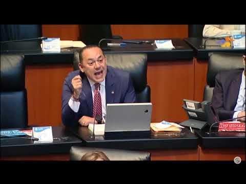 Senador Erandi Bermúdez Méndez, al referirse a las sesiones de la Cámara de Diputados